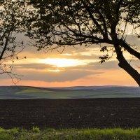 Закат над полями Молдовы :: Юля Колосова