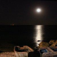 лунная ночь :: анатолий грицаенко