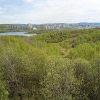 Семеновское озеро и Храм Спаса на Крови :: Иваннович *