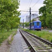 Трамвай :: Наталья Сергеевна