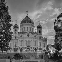 Вид на Храм Христа Спасителя :: Владислав Касатик