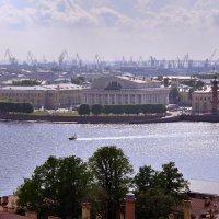 Вид на город с колокольни :: Наталья Левина