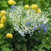 Весенний букет :: Ирина Шарапова