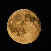 Луна :: Михаил Вандич