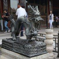 Пекин, Запретный город, Дракон :: Сергей Смоляр