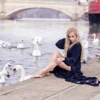 Черный лебедь :: Inara Bakej