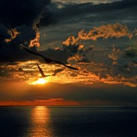 Касаясь солнца ... :: Александр Бойко
