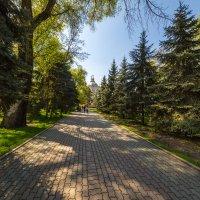 Дорога в храм :: Марат Макс