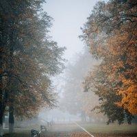 Осенняя печаль :: Лоретта Санина