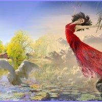 «Белая лебедь - гордая птица ...» :: vitalsi Зайцев