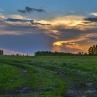 В поле на закате :: cfysx
