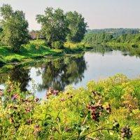 Спокойствие северных рек :: Валерий Талашов