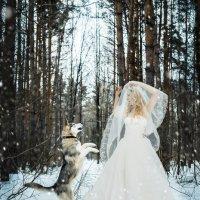 Снежная королева :: Катерина Фомичева