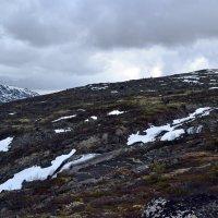 Весна в горах :: Ольга