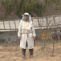 уход за пчёлами... :: Михаил Жуковский