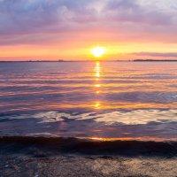 Северная Двина :: Наталья Шкаева