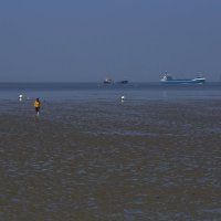 Море ушло... :: Вальтер Дюк