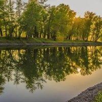 Засмотрелись берега в реку. :: юрий Амосов