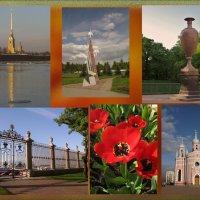 Виват, Санкт-Петербург! :: ТАТЬЯНА (tatik)
