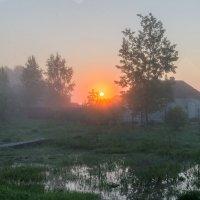 Утро :: Денис Шевчук