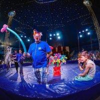 Цирк :: Андрей Липов