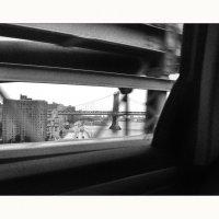 Bridges Hiss By My Window :: Алексей