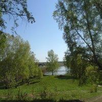 Пейзаж. :: Мила Бовкун