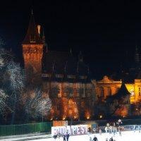 Ночной каток у старого замка :: M Marikfoto