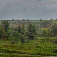Дождь за окном... :: Владимир Григор