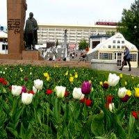 Весна в Красноярске :: Любовь Иванова