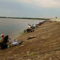 рыбалка next :: Юрий Новичков