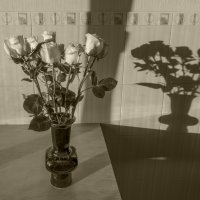 Иные розы :: Павел Самарович