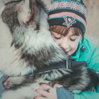 Собака — это не просто друг человека, это часть семьи! :: Аля К