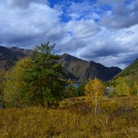 Осенний пейзаж. :: Валерий Медведев