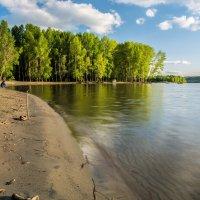 На реке в погожий день :: Андрей Поляков