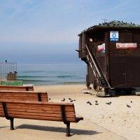 Зимний пляж на Средиземном море :: Alex Molodetsky