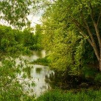 У озера в Рагните :: Игорь Вишняков