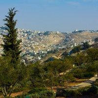 Иерусалим. Вид на район Талпиот :: Игорь Герман