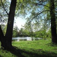 Какое небо синие, какая трава зеленая ) :: Тамрико Дат