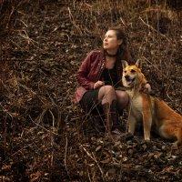 Лосиный Остров - Приют Красная Сосна :: Igor Veter