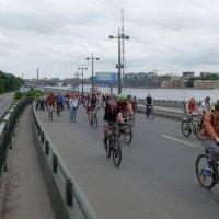 Велопарад 2016 Санкт-Петербург :: tipchik