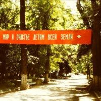 1 июня 1984г.  +42* Ашхабадский  1ый парк ЦПКиО. :: Alexey YakovLev