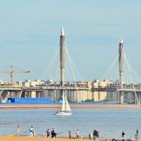 Разводной мост :: Николай Танаев