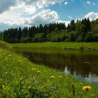 Москва-река в Старой Рузе :: Alexander Petrukhin
