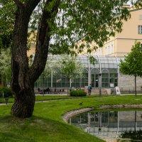 Кафе в Польском садике :: Елена Кириллова