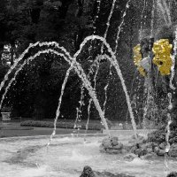 И в Летний сад гулять водили...) :: tipchik
