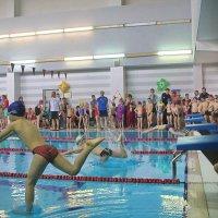 Кто-то побежал, кто-то поплыл, а кто-то еще думает- что делать дальше? :: Tatiana Markova