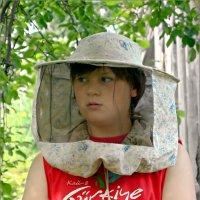 Очень подозрительные пчёлы... :: Кай-8 (Ярослав) Забелин