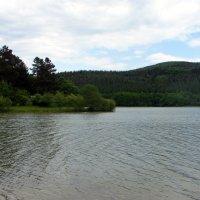 На озере. :: Olga Grushko