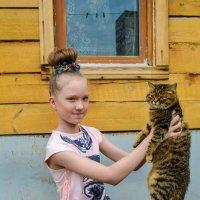 вот такая у меня кошка :: Света Кондрашова